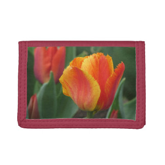 Red and Yellow Tulip Trifold Wallet