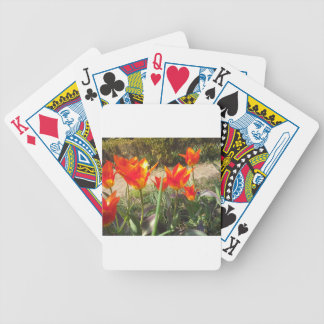 Red and Yellow Tulips Bicycle Playing Cards