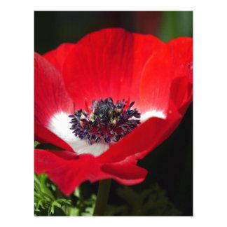 Red Anemone.JPG Custom Letterhead