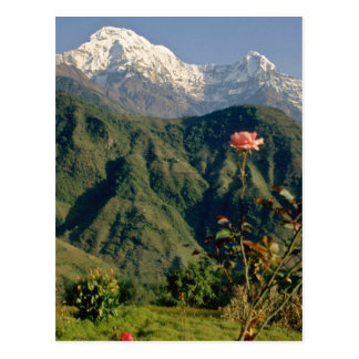 Red Annapurna South from Gangdrung, Himalayas flow Postcards