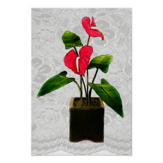 Red Anthurium in Planter Poster