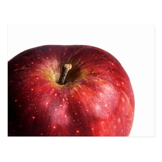 Red Apple on White Postcard