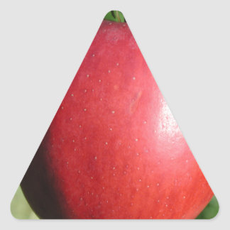 Red Apple with a Leaf Triangle Sticker