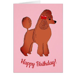 Red Apricot Poodle Pink Happy Birthday Card