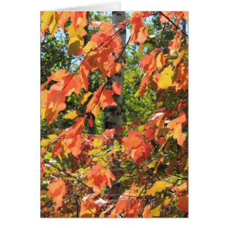 Red Autumn Leaves Card