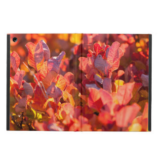 Red autumn leaves iPad air cover