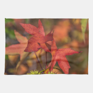 Red autumn leaves kitchen towel