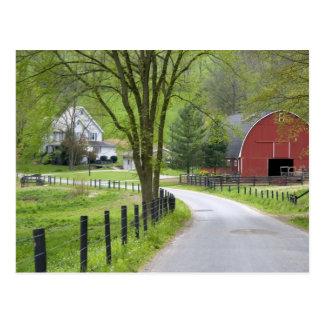 Red barn and farm house near Berlin, Ohio. Postcard
