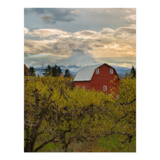 Red Barn at Pear Orchard Oregon Letterhead
