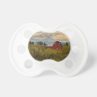 Red Barn at Pear Orchard Oregon Pacifier