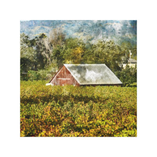 Red Barn in a Vineyard Canvas Print