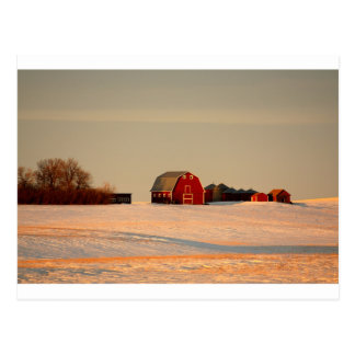 Red Barn Postcard