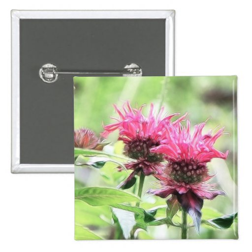 Red Bee Balm Blooms Pin
