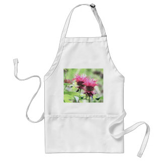 Red Bee Balm Blooms Standard Apron