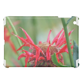 Red Bee Balm Flowers iPad Case