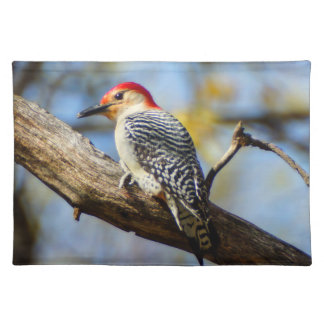 Red-Bellied Woodpecker Cloth Placemat
