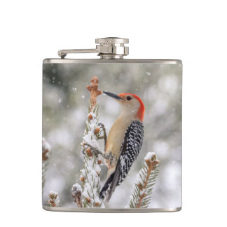 Red-bellied Woodpecker in the snow Hip Flask