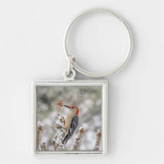 Red-bellied Woodpecker in the snow Keychain