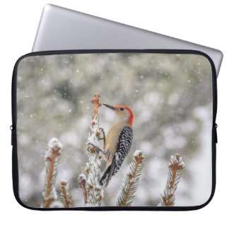 Red-bellied Woodpecker in the snow Laptop Sleeve