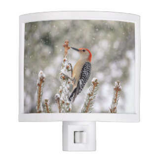 Red-bellied Woodpecker in the snow Night Lite