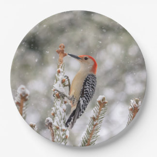 Red-bellied Woodpecker in the snow Paper Plate