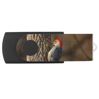 Red-bellied Woodpecker on a Tree USB Flash Drive