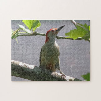Red-bellied Woodpecker, Photo Puzzle. Jigsaw Puzzle