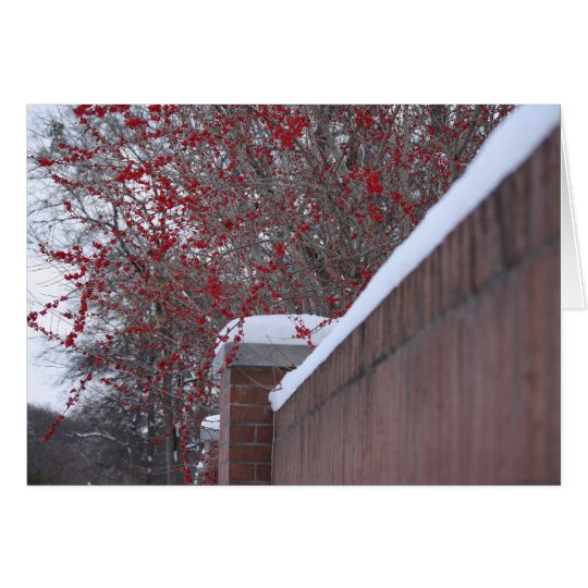 Red Berries and Snowy Fence Christmas card