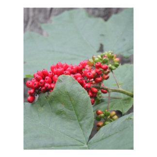 Red Berries In Alaska Letterhead Design