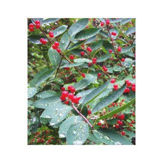 Red Berries in the Morning Dew Canvas Print