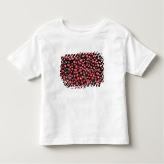 Red berries of the Himalayas Toddler T-shirt