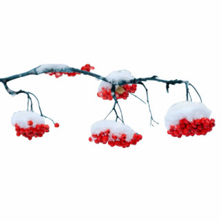 Red berries photo sculpture magnet