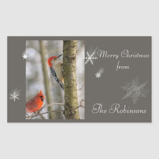 Red Birds Cardinal Woodpecker Snow Flake Christmas