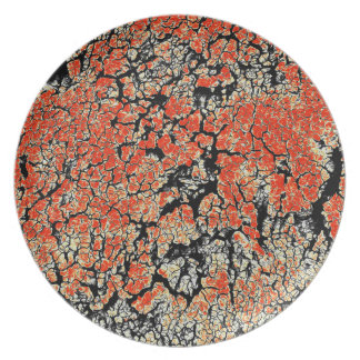 Red Black White Yellow Earth Plate
