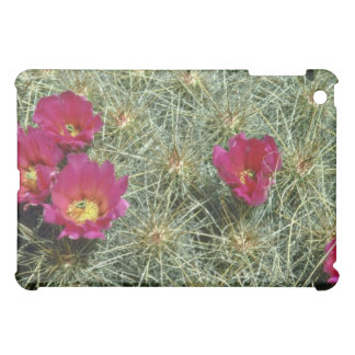 Red Blooms On Cactus flowers iPad Mini Cases