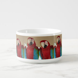Red, Blue, Green Macaws (Parrots) Bowl