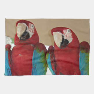 Red, Blue, Green Macaws (Parrots) Kitchen Towel