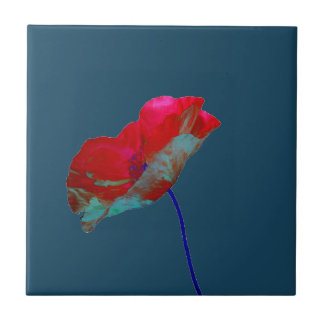 Red blue poppy on night blue tile