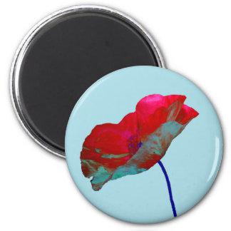 Red blue poppy on pastel blue magnet