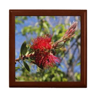 Red Bottle Brush Flower Jewelry Box