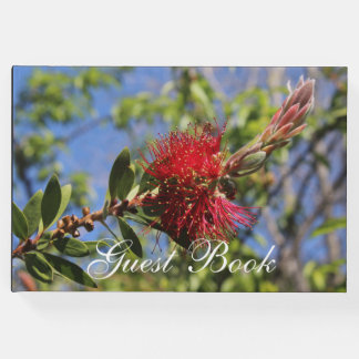 Red Bottlebrush Floral Guest Book