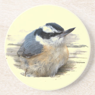 Red-breasted Nuthatch Drink Coaster