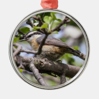 Red-breasted Nuthatch Silver-Colored Round Ornament