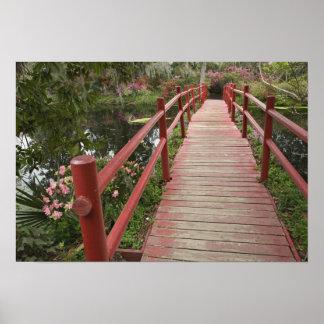 Red bridge over pond, Magnolia Plantation, Poster