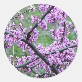 Red Bud Tree Round Sticker