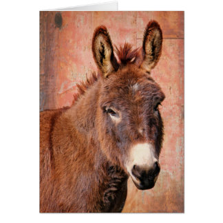 Red Burro Donkey Note Card