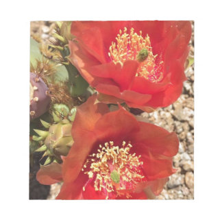 Red cactus flower notepad