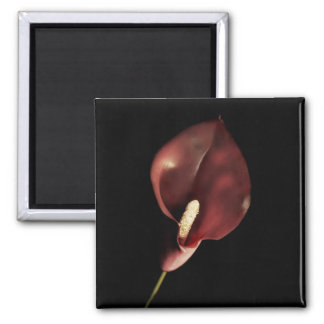 Red Calla - Magnet