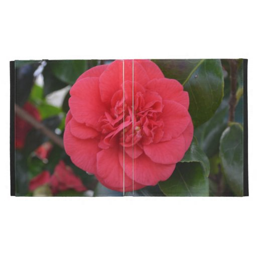 Red Camelia Flower iPad Folio Covers