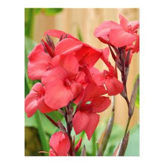 Red canna flowers letterhead